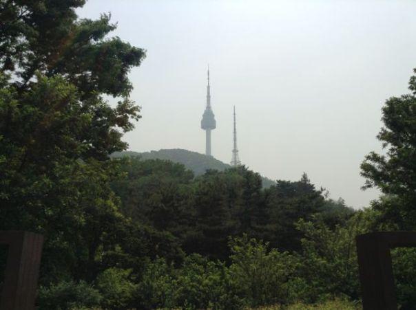 南山公園1338