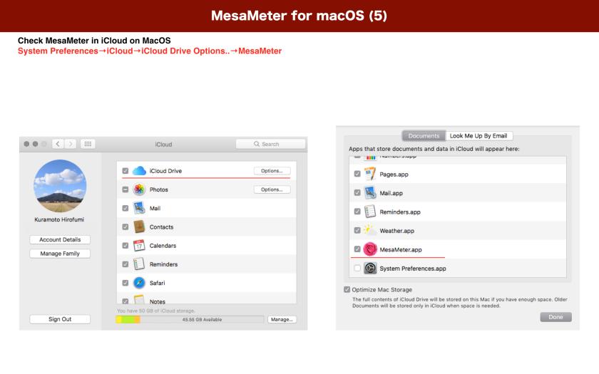 MesaMeter4macOS.010